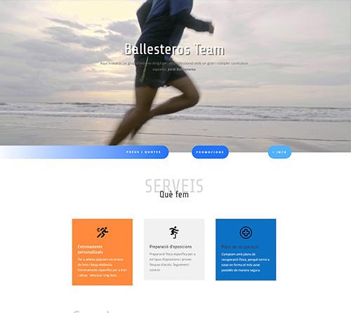 sarda-disseny-dipro-web